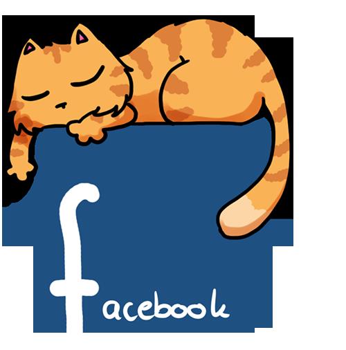 Mietzecacher auf Facebook